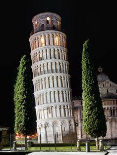 Pisa - Torre pendente di notte con cipressi