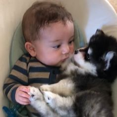 (notitle) - Animals that I love - Chien Cute Funny Animals, Cute Baby Animals, Funny Cute, Animals And Pets, Kids And Pets, Funny Babies, Funny Dogs, Cute Babies, Funny Humor