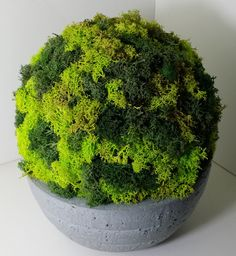 Etsy - Shop for handmade, vintage, custom, and unique gifts for everyone Moss Wall Art, Moss Art, Moss Graffiti, Pots, Deco Floral, Garden Ideas, Herbs, Vintage, Home Decor