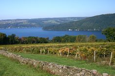 Finger Lakes Wine Country in New York State, USA #usa #newyork #fingerlakes