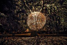 The Nest: Nidos de Madera, por Jan Tyrpekl