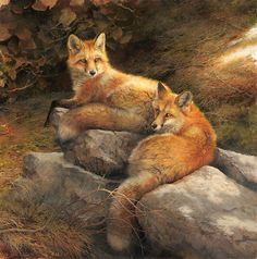 """The Courtship by Bonnie Marris LIMITED EDITION CANVAS Image size: 24""""w x 24""""h. Limited Edition of: 50"""