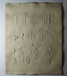 From a collection of pictures for the blind (tactile graphics with braille and print), created by M. Kunz, Director of the Illzach School near Mulhouse, France, 1902. The page is filled with plants.Visit the Perkins Archives Flicker page: http://www.flickr.com/photos/perkinsarchive/collections/