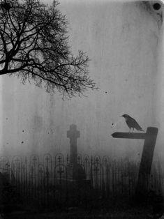 Funeral/Atmospheric/Doom/Depressive/Suicidal/Black Metal