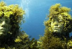 Mermaid Inspiration: Jason deCaires' underwater sculptures and what grows on them