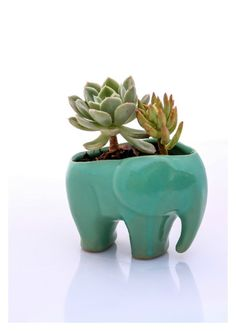 Elephant planter, ceramic succulent planter,  handmade pottery planter , mint green elephant - READY TO SHIP