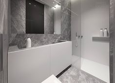 http://boomzer.com/a-solitary-or-family-home-interior-of-grey/gray-marble-bath-glass-shower-marble-walls-decorations-tamizo-architects/