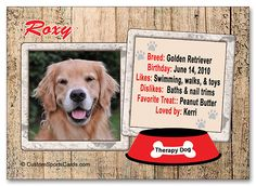 Our favorite family member/therapy dog :0) www.customsportsc... Use pin15 for 15% off