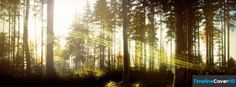 Forest1 Facebook Timeline Cover Hd Facebook Covers - Timeline Cover HD