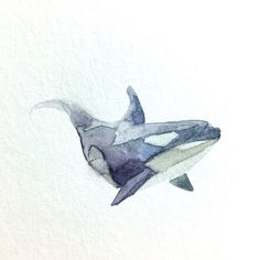 "Killer Whale (Orca), 4""x4"" original watercolor painting by MaggieGreenArt on Etsy https://www.etsy.com/listing/461440062/killer-whale-orca-4x4-original"