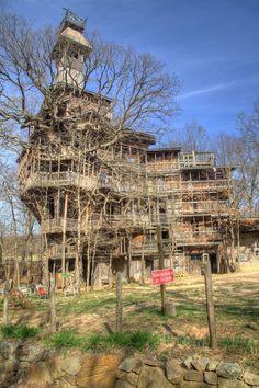 Maior casa na árvore do mundo não oficial (Foto: Frank Kehren / Flickr)
