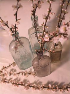 cherry blossom bouquet - Google Search