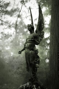Angel, Angelo, Engel, cimetero, cemetery Frankfurt