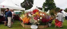 The RHS Wisley Flower Show opens on Tuesday 6th September 2016 and runs until…