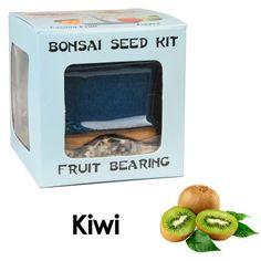 Eve's Kiwi Bonsai Seed Kit, Fruit-Bearing, Complete Kit to Grow Kiwi Bonsai from Seed Eve's Garden, Inc http://www.amazon.com/dp/B0080HX14M/ref=cm_sw_r_pi_dp_9hW.wb0EPGMJQ