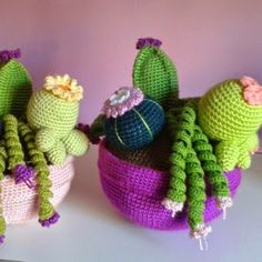 Free crochet patterns for some amazing cactus plants (in Spanish). Amigurumi For Beginners, Crochet Patterns For Beginners, Crochet Flower Patterns, Crochet Flowers, Cactus Flower, Cactus Plants, Crochet Cactus, Amigurumi Patterns, Amigurumi Doll