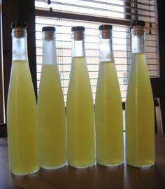 Homemade Limoncello - sherbet lemons in a bottle