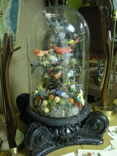 Victorian glass dome full of birds