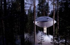 This particular treehouse at the Treehotel is called the UFO. As you can see, it couldn't be more of... - Treehotel, Sweden
