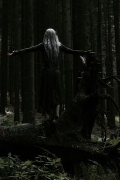 Love of the forest | The North Realm