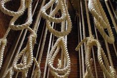 200 prisoners about to be executed in Karaj Call on the youth to protest these criminal executions and express their sympathies to families of victims NCRI - In face of extensive domestic and external crises, especially pursuant to one-step retr...