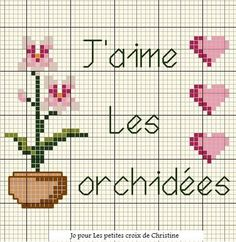 Free graph on blog not in English. I like orchids! Orchid_es_1_