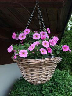 Planter Pots, Garden, Garten, Lawn And Garden, Gardens, Gardening, Outdoor, Yard, Tuin