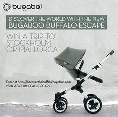 Bugaboo Buffalo Escape Giveaway!!