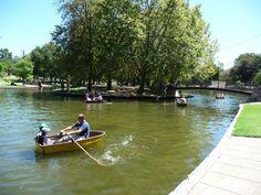 Rymill Park Boat lake