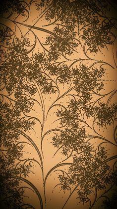 Galhos e folhas
