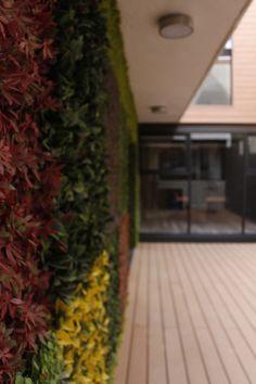 #Exterior #Interior #Jardín #Diseño #Verde #Muro #Recubrimiento #Deck #Pasto #Hogar #Familia #Amigos #Reunión #Espacio #Vista #Comodidad #Casa #Moda #Arquitectura