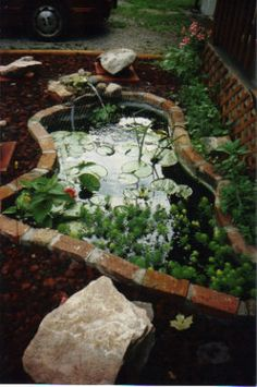 Pond Landscaping On Pinterest Pond Waterfall Pond Ideas