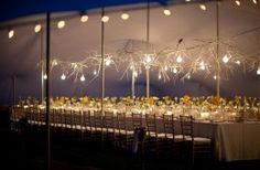 events and venues African Safari, Wedding Planner, Chandelier, Ceiling Lights, Lighting, Gallery, Inspiration, Home Decor, Wedding Ideas