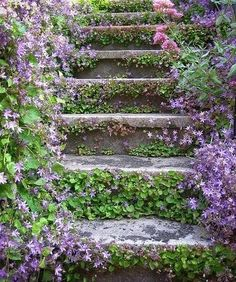 Early American Gardens:  I need to do this to our ugly concrete front steps
