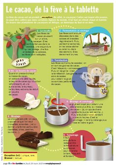 "Mon Quotidien - Infographie extraite de la VS ""La grande aventure du chocolat"" pour le Syndicat du Chocolat - www.playbac-editions-speciales.fr Study French, Learn French, French Teacher, Teaching French, Montessori, Food Vocabulary, Le Cacao, French Classroom, French Resources"