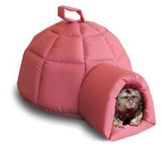 Cage accessories for Marmoset Monkeys, Sugar Gliders, Chinchillas, Guinea pigs etc in the Other Pet Supplies category was sold for on 5 Feb at by DogzinCats in Johannesburg Chinchilla Pet, Pet Ferret, Monkey Cage, Cute Monkey, Marmoset Monkey For Sale, Monkeys For Sale, Pets For Sale, Pet Cage, Pet Accessories