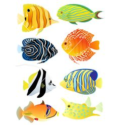 Illustration of Collection of colorful tropical fish vector art, clipart and stock vectors. Fish Vector, Vector Art, Tropical Fish Pictures, Underwater Painting, Watercolor Fish, Ceramic Fish, Fish Drawings, Sea Fish, Fish Design