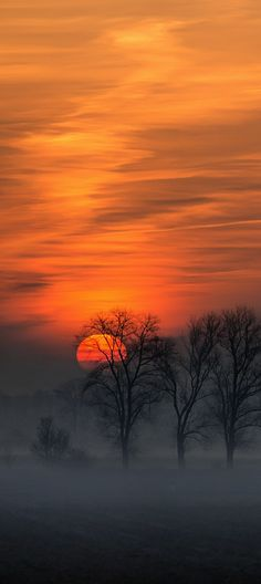 Sunrise with mist, Hotteln, Germany