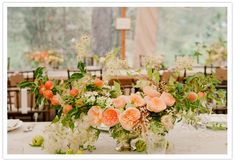 These flowers (peach and green!) make my heart flutter.  I love Juliet Roses.  So gorgeous.  Image via 100 Layer Cake from November 16, 2010.