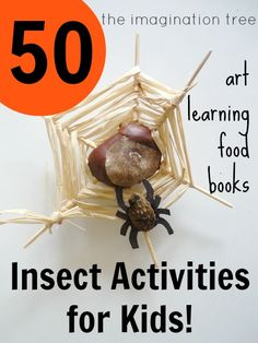 50 Activities for Playing and Learning with Insects! Do you know any kids who love bugs and all things creepy crawlie?! Here are over 50 fantastic activity ideas for keeping kids busy with their favourite topic, from art and crafts, to learning activities, tasty snacks and really icky sensory play!