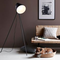 Nordlux Largo Tripod Floor Lamp - Black Nordlux Largo is an authentic tripod floor lamp with references to a stylish loft apartment in New York. This lamp provides cosy lighting in any corner of the room, or position it behind the sofa to act Tripod Floor Lamps, Lamp, Black Tripod Floor Lamp, Cosy Lighting, Nordlux, Floor Lamp, Corner Lamp, Flooring, Wall Design
