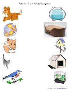 Škôlka je zábava plánovacie činnosti: Domáce zvieratá