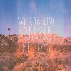 """""""We can live forever if you've got the time."""" - Save Yourself, I'll Hold Them Back"""