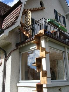 Outdoor cat ladder - if i ever have a garden.