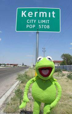 They finally settle in Kermit, Texas. Frog and pig live happily ever after. THE END.