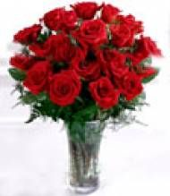 Send online Red Rose with vase to Pune delivery. Here you can find all types of gifts for any occasions in Pune. Fast home delivery to Pune.  Visit our site : www.puneflowersdelivery.com/flowers/wedding-flowers-to-pune.html