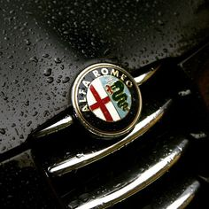 Who likes rain? #rain #wet #wetitalian #alfaromeo#alfagta #alfa147gta#alfa147#147gta#bestcars#bestsound #sportscars#busso#italiancars#italianflag#arese #V6#alfisti#quadrifoglio#blackcars#engine#madeinitaly#cuoresportivo#alfista#instacar #nero #black