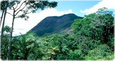 A Cumuru Magical Tour leva você ao Monte Pascoal.