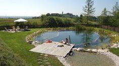 natural swimming pool - Google Search
