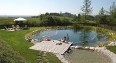 natural swimming pool - Google Search